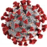 covid19 virus image